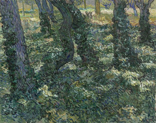 , 'Undergrowth,' 1889, Van Gogh Museum