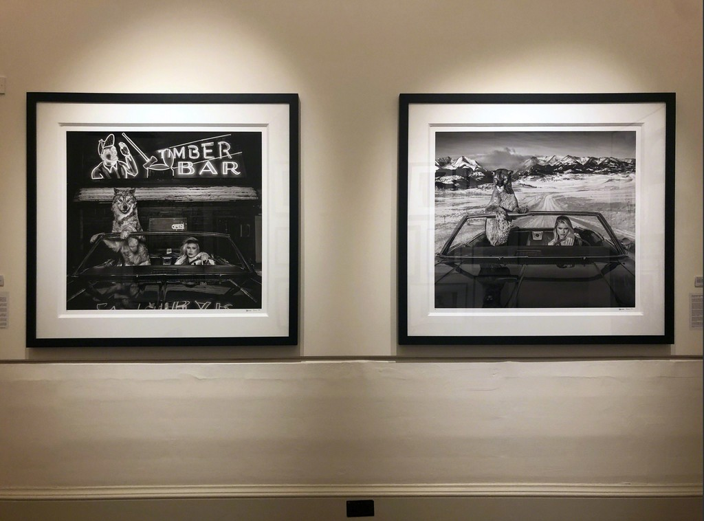 "David Yarrow's ""Coyote Ugly"" and ""No Country for Old Men"", Holden Luntz Gallery at Photo London 2019"
