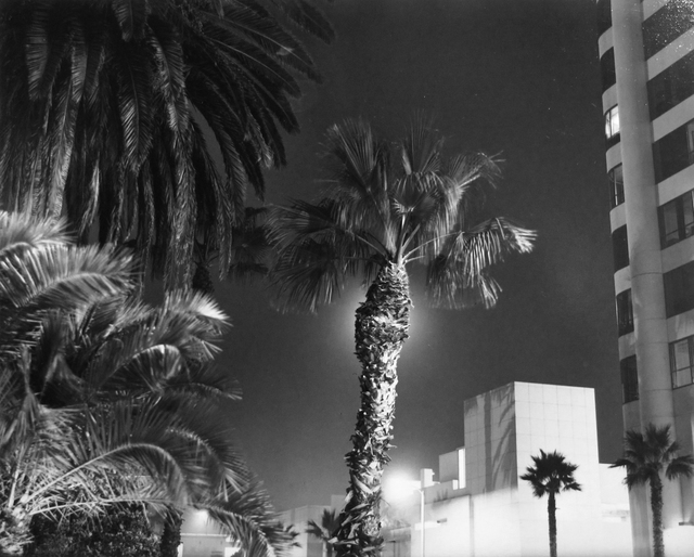 Bruce Davidson, 'Wilshire Blvd, Los Angeles, California', 2008, ROSEGALLERY