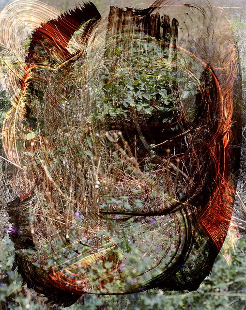 , 'Lickburg Tendervee,' 2016, Back Gallery Project