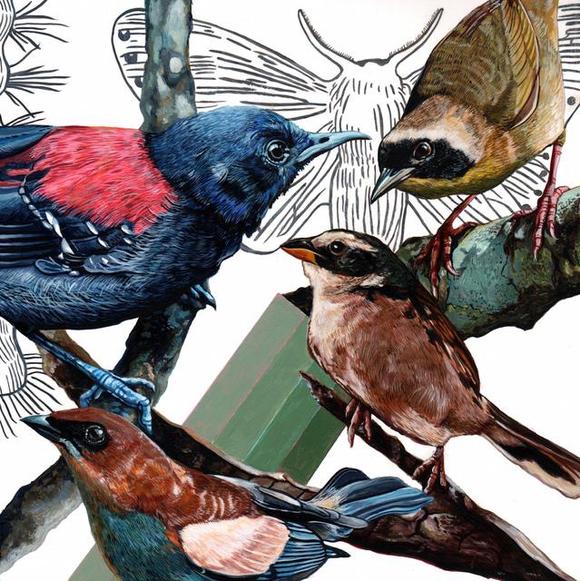 , 'Endangered Bird #147,' 2015, Jenn Singer Gallery