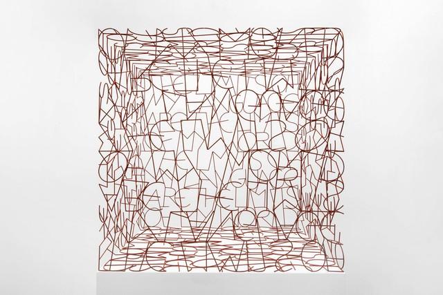 , 'Wittgenstein's Cage,' 2009, Flowers