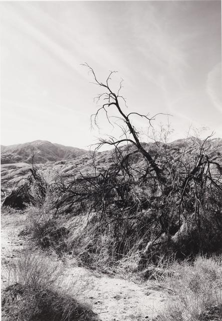 , 'Solitude,' ca. 2005, Mac-Gryder Gallery