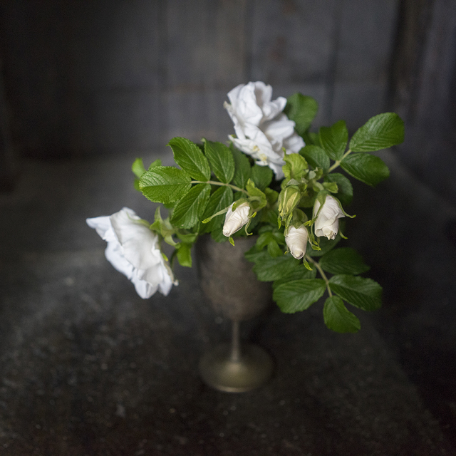 , 'Block Island,' 2015, Deborah Bell Photographs