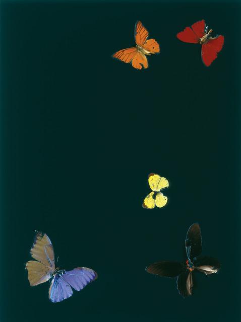 , 'A Deep Earthy Green Kiss,' 2007, Galería Hilario Galguera