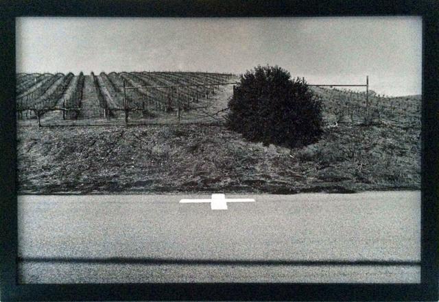 , 'Paso Robles, Califronia,' 2015, Addison/Ripley Fine Art