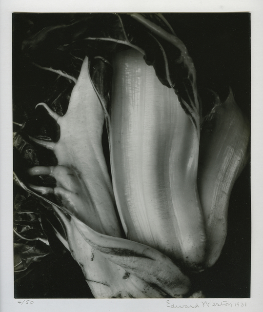 , 'Chinese Cabbage,' 1931, Michael Dawson Gallery