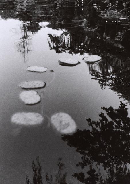 , '況位  Located Situation,' , Tomio Koyama Gallery