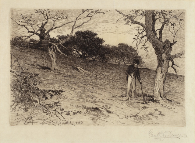 George Henry Smillie, 'Old New England Orchard', 1883, National Gallery of Art, Washington, D.C.
