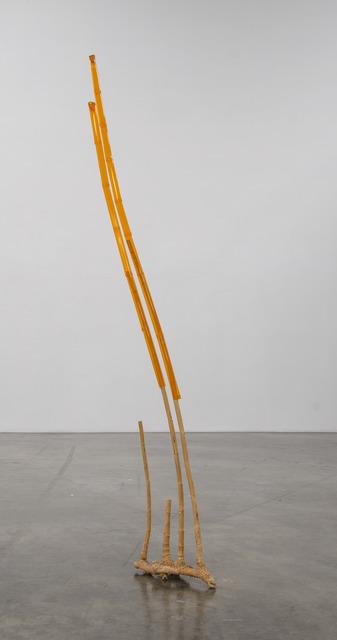 , 'Bamboo Extension,' 2016, Shoshana Wayne Gallery