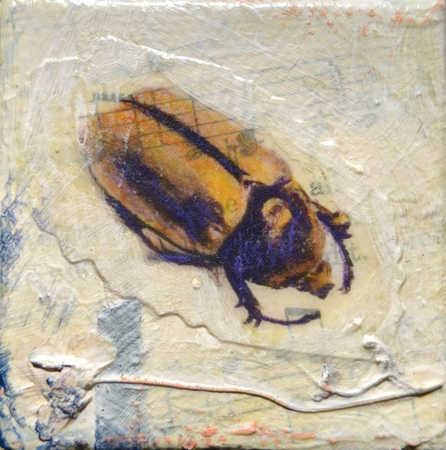 , 'Brown Beetle #1,' , Sparrow Gallery