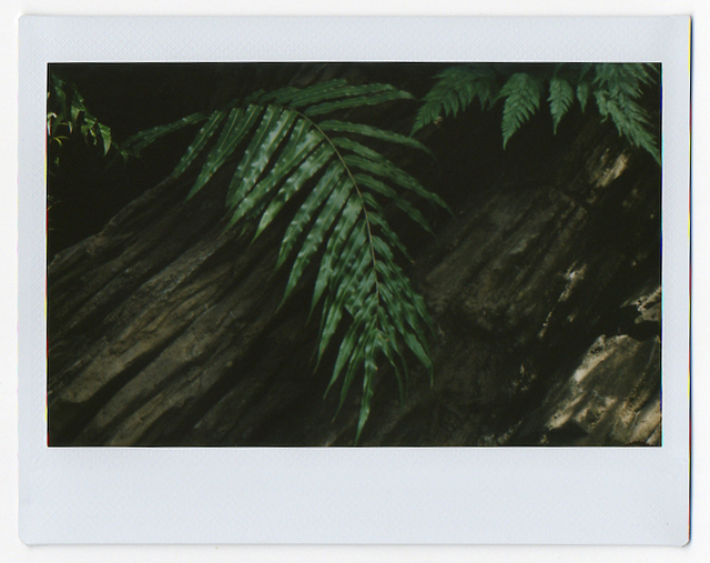 Ryan James MacFarland, '05.26.13', 2013, Photography, Fujifilm Instax print, Uprise Art