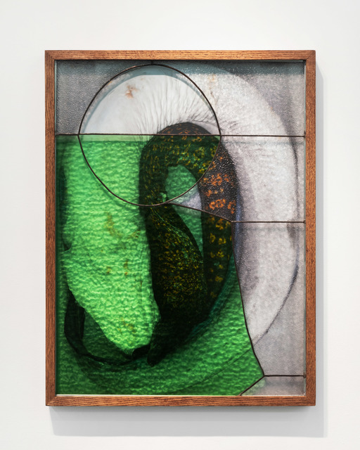 , 'Eels,' 2019, Daniel Faria Gallery