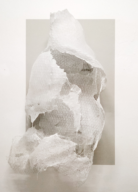 , 'Cocoon (esoscheletro),' 2016, Francesca Minini