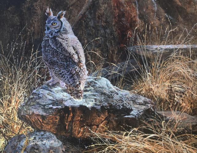 , 'Resting Rock -  Horned owl,' , Trailside Galleries