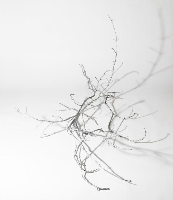 , 'Prop – Form eines Asthaufens (nach G.W. Leibniz),' 2013, unttld contemporary