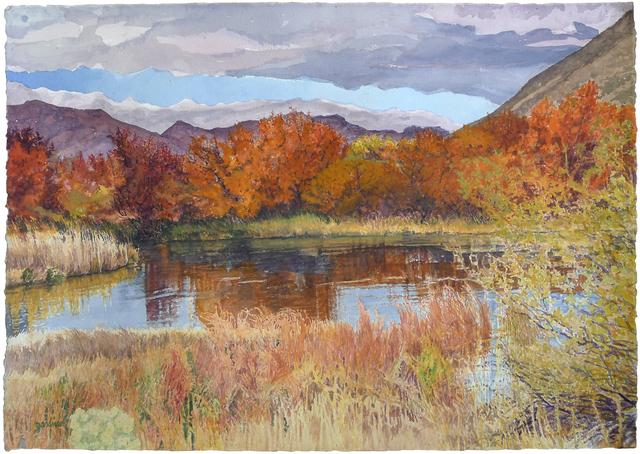 Sheila Gardner, 'Shades of Bronze on Silver Creek', Gail Severn Gallery
