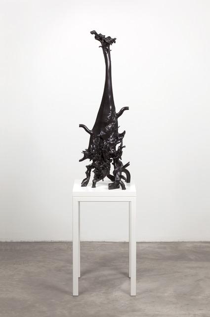 , 'song, John Merrick's inner ear as a vase,' 2013, Kerlin Gallery
