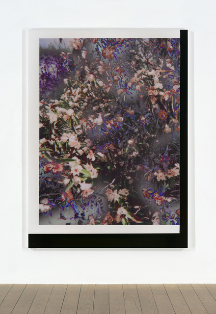 , 'Untitled (Feb_24_2015_Floral_LuluBook _Scan 3),' 2015, Galerie Andreas Huber