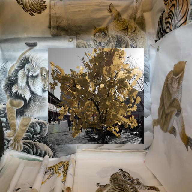 , 'Da série Overshoot,' 2017, Casa Nova Arte e Cultura Contemporanea