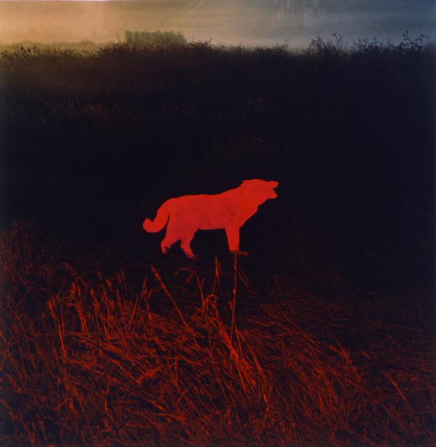 , 'Five Print Portfolio,' 1987, Gallery Luisotti