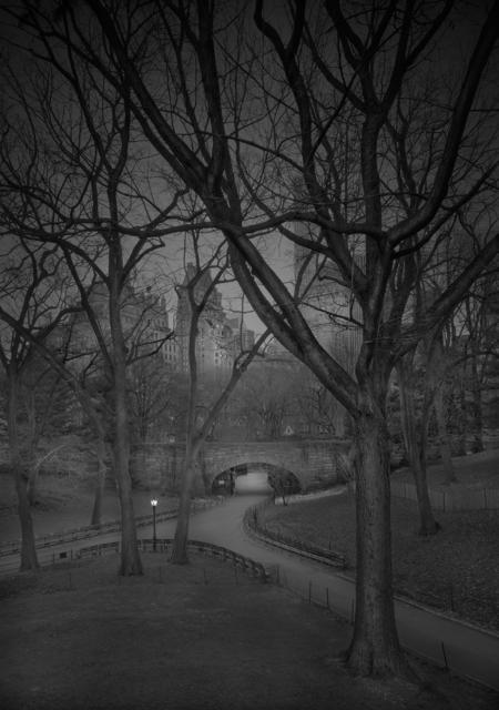 , 'Zoo Entrance - Pre-Dawn - Deep In A Dream - Central Park,' 2016, Holden Luntz Gallery