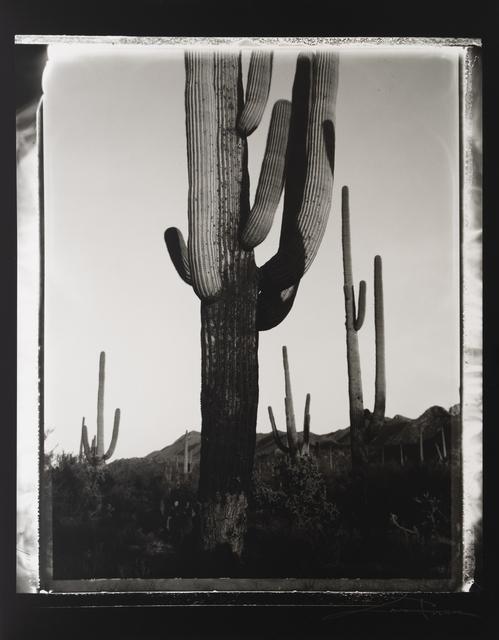 Lara Porzak, 'Greetings from Tuscon',  2002, The Spaceless Gallery