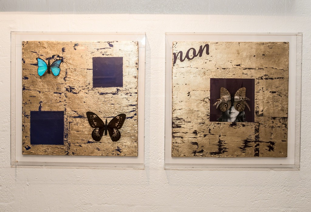 Butterfly Boards I and II