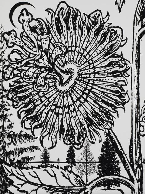 , 'Untitled 01 from Calathidium,' 2006, Paragon