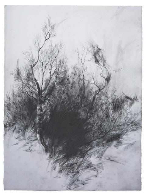 , 'Absence,' 2018, LWM18