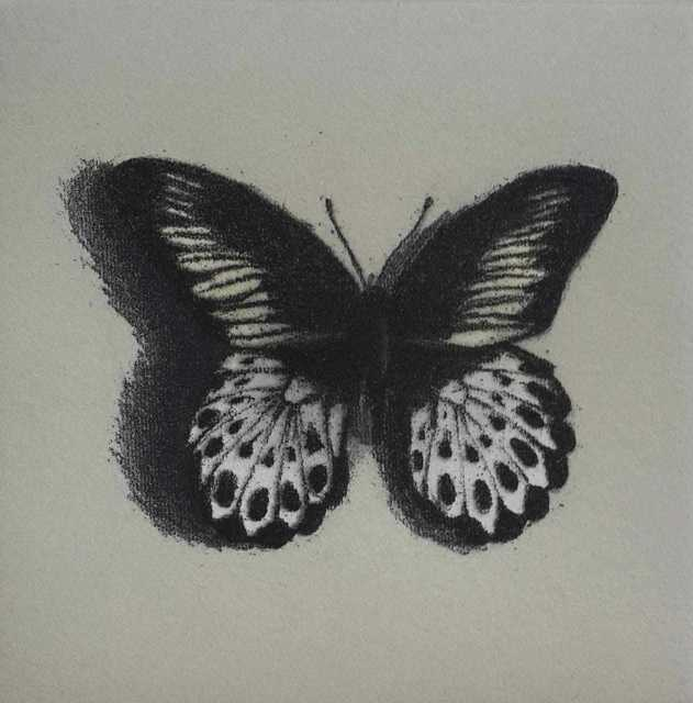 Lisa Milroy, 'Butterfly III', 1940, One Off Contemporary Art Gallery