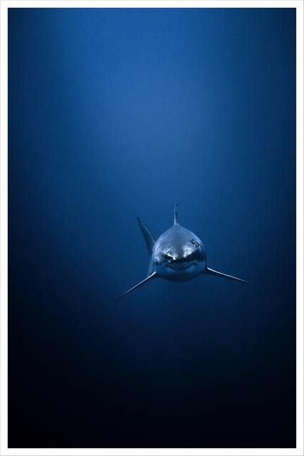 , 'Deep Blue,' 2009, TASCHEN