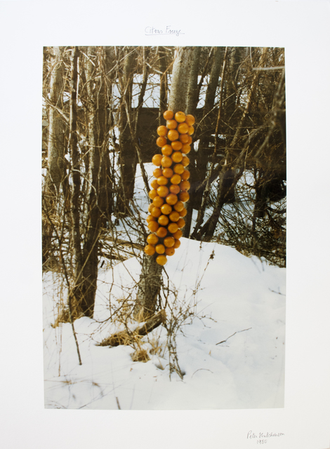 , 'Citrus Freeze,' 1980, Gaa Gallery