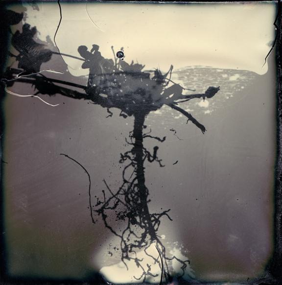 , 'Aspiration ,' , Walker Fine Art