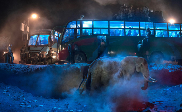, 'Bus Station with Elephant in Dust,' 2015, Holden Luntz Gallery