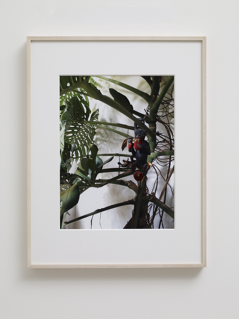 , 'Monkey Family,' 2015, Marian Goodman Gallery