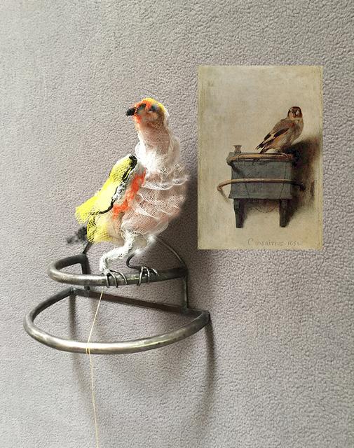, 'The goldfinch aft Carel Fabritius 1654,' 2017, Cross Contemporary Art