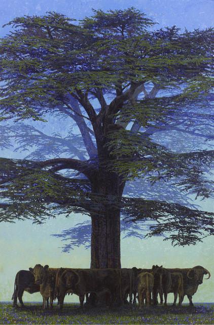 , 'Cedar with Longhorn Cattle, Rousham, Oxford,' 2017, John Martin Gallery