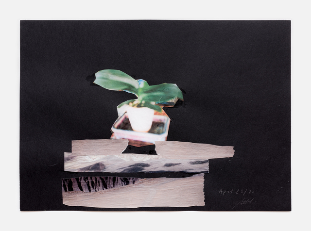 Simone Fattal, 'Flower', 2020, Drawing, Collage or other Work on Paper, Collage, Galerie Hubert Winter