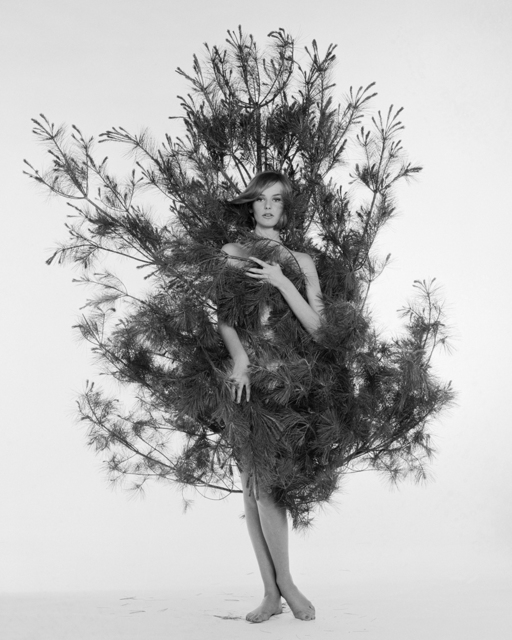 , 'Nena in Fir Tree, Nena von Schelbrugge,' ca. 1959, Staley-Wise Gallery