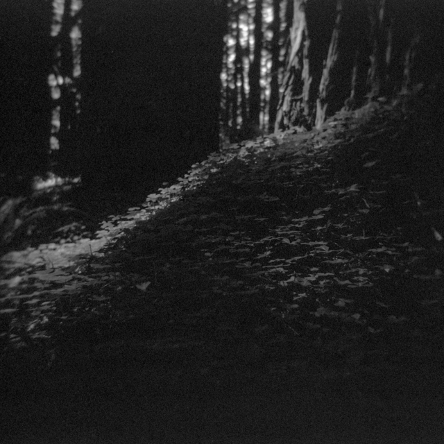 , 'Primal Wild 9,' 2014, Silo118