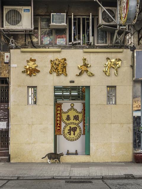 , 'HONG KONG SHOP CATS #6-,' 2015, Blue Lotus Gallery