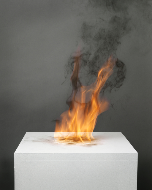 , 'Camphor Flame on Pedestal (0411),' 2010, Nature Morte