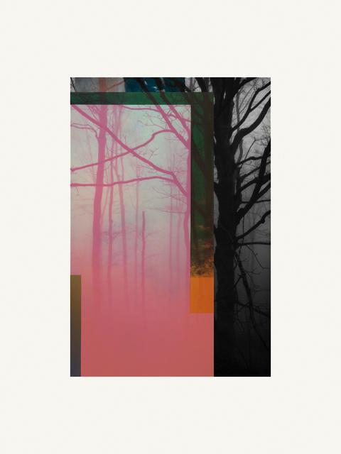 , 'Forest IX,' ca. 2018, Artgráfico
