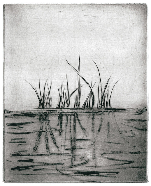 , 'Grasses #2,' , The South Street Gallery