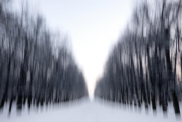 , 'Main Avenue, Pavlovsk,' 2014, Hamiltons Gallery