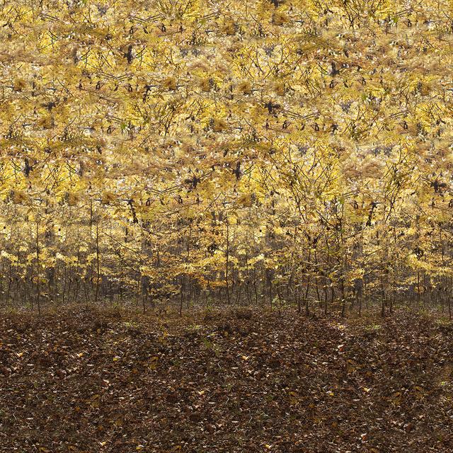 , 'Imaginary Excursion 15,' 2015, VILTIN Gallery