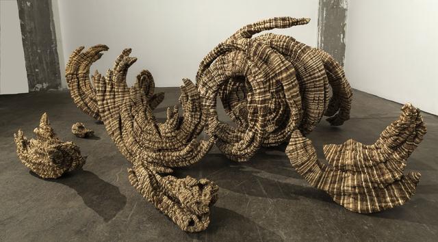 , 'Specimens,' 2013, John Davis Gallery