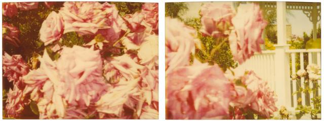 , 'Rosegarden #01, diptych,' 2004, Instantdreams