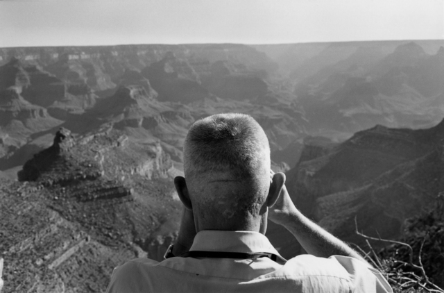 Lee Friedlander, 'Grand Canyon National Park, Arizona', 1975, Etherton Gallery